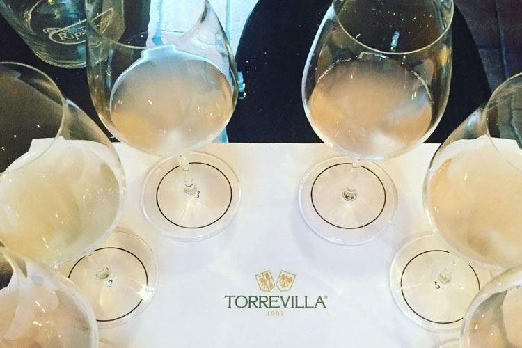 I Pinot Nero della Cantina Torrevilla Un patrimonio da 2,5 milioni di bottiglie