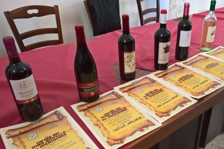 Salone del vino novello A Cosenza la vendemmia 2019