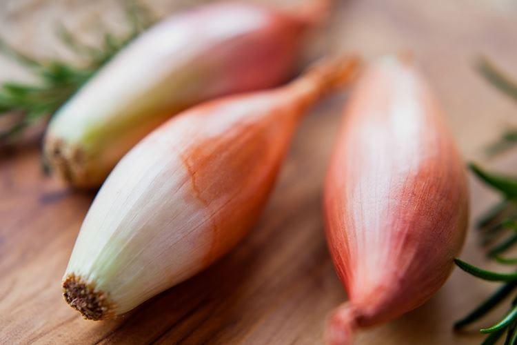 Lo scalogno, un compromessotra l'aglio e la cipolla