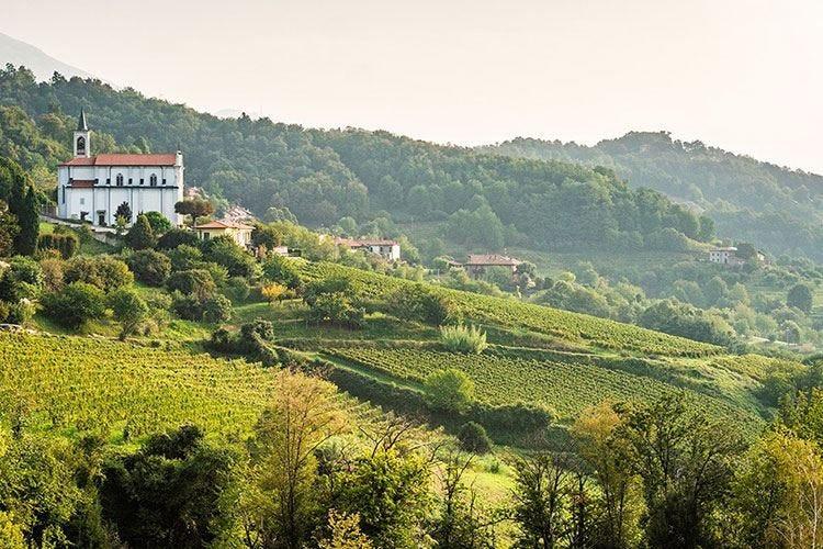 Scoprire la val Pontidatra vino e golosità