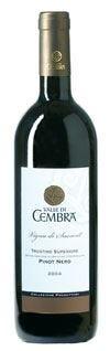 Pinot nero Collezione Produttori Vigna di Saosent di La Vis e Valle di Cembra