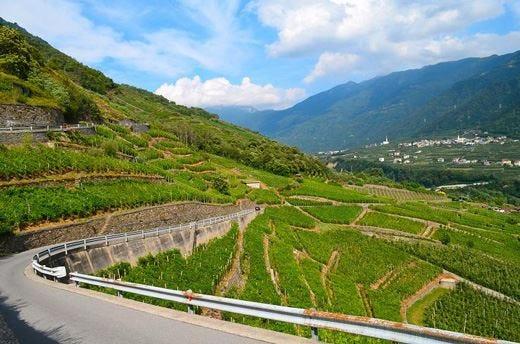 """Valtellina, un territorio da gustare Vini, piatti e prodotti """"doc"""""""