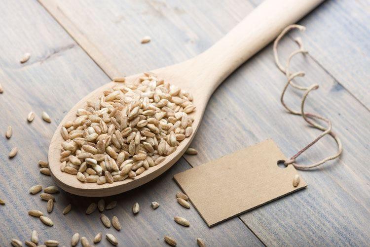 Torna il festival dei cereali Occhi puntati su farro e salute