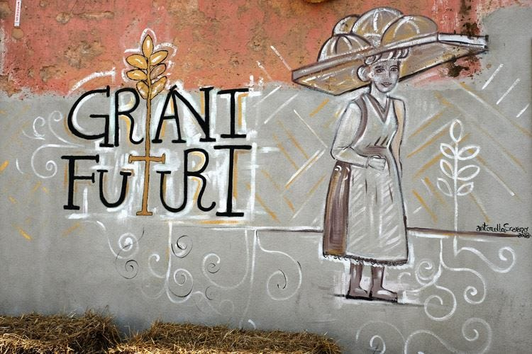 Torna in Puglia Grani Futuri Due giorni d'incontri attorno al pane