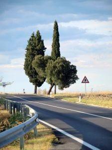 I giusti ingredienti per il futurodel turismo enogastronomico italiano
