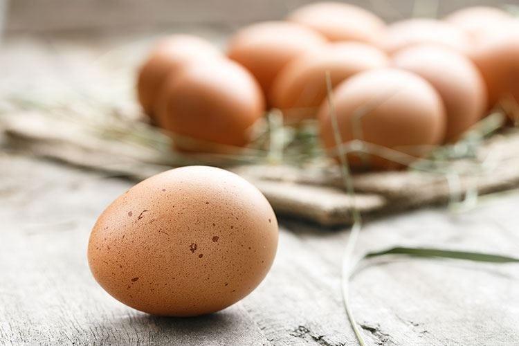 Il trattamento delle uova Primo, conservarle al fresco