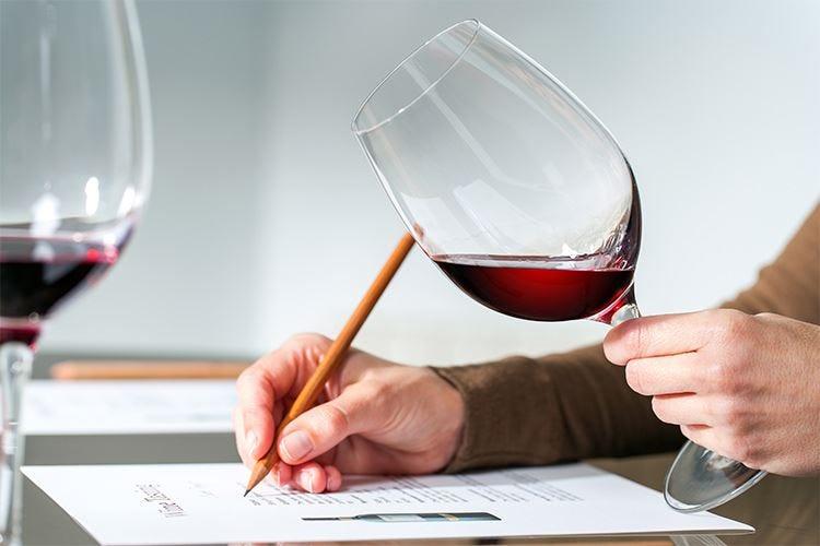 Dal Trentino alla Sicilia, cinque vini mettono d'accordo tutte le guide