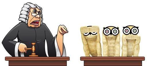 Il web tarocco finirà in tribunale TripAdvisor non convince la Fipe