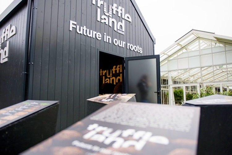 Il progetto Truffleland nasce dall'azienda Urbani Tartufi L'innovazione della tartuficoltura Tra imprenditoria e sostenibilità
