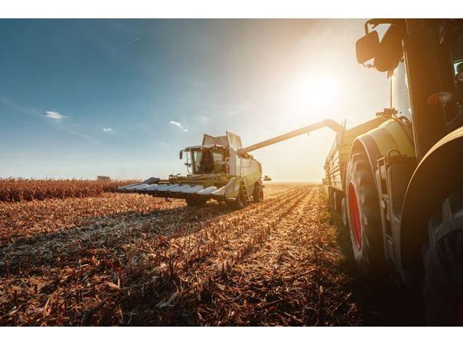 Tutte le novità per l'agroalimentare La Manovra piace alla Coldiretti
