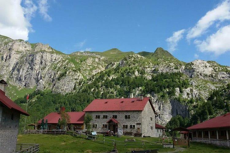 Undici chef in quattro malghe Showcooking d'autore in montagna - Italia a Tavola