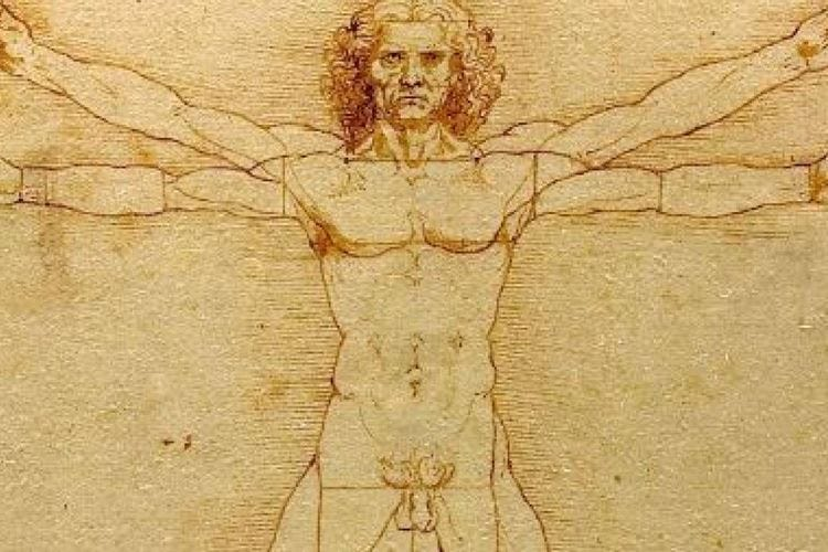 Il Tar blocca l'Uomo Vitruviano Cremona gli fa una statua di torrone