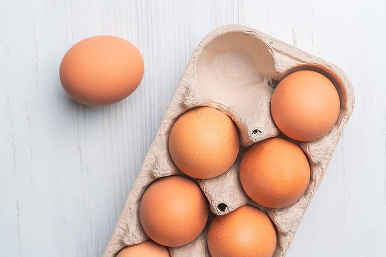 EggTrack 2020, sì alla trasparenza La filiera delle uova in evoluzione