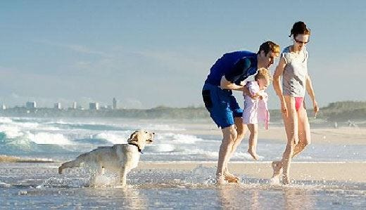 Le vacanze? Meglio in affitto Tra case pet friendly e risparmio