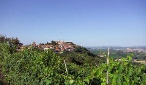 Barolo: un tour nelle Langhe  Tra castelli, vigneti e ristoranti
