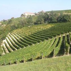 Agriturismo San Martino nelle Langhe Il lato