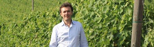 Il vino della Campania nel dna dell'enologo Vincenzo Mercurio - Italia a  Tavola