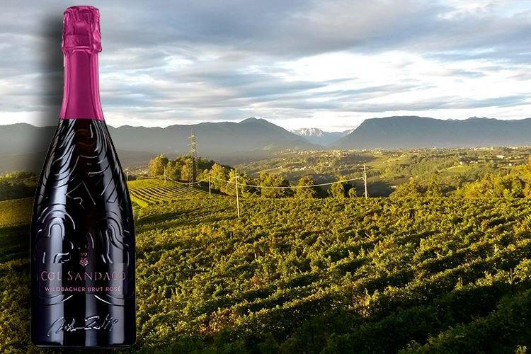 Wildbacher Brut Rosé Ispirato all'arte di Martino Zanetti