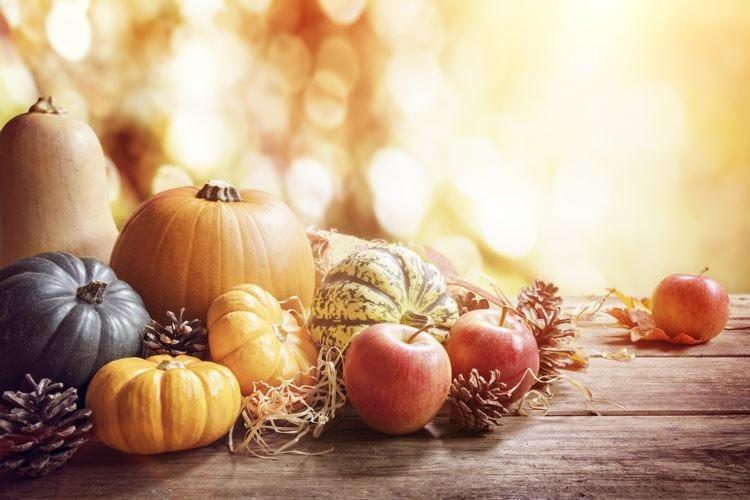 La zucca regina dell'autunno In Lombardia metà della produzione